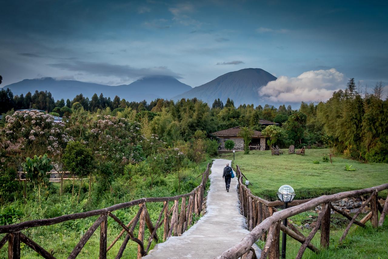 Gorilla Mountain View Lodge Path