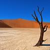 Clay Pan - Sossusvlie Dunes, Namib NP