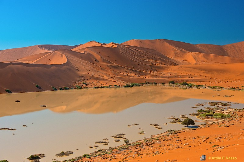 Flooded Pan - Sossusvlie Dunes, Namib NP