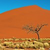 Sossusvlie Dunes, Namib NP