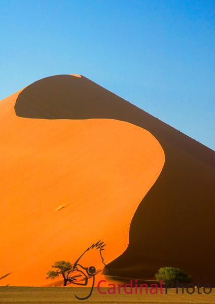 Sossusvlei Dunes near Dead Vlei in the Namib Desert, Namibia