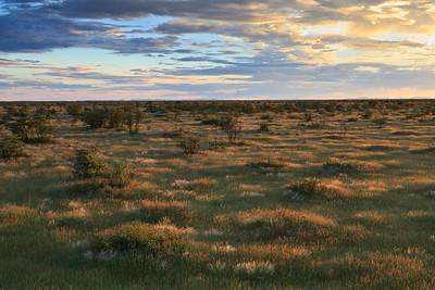 Etosha National Park landscape