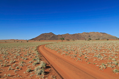 Roadway through Namib Naukluft Park