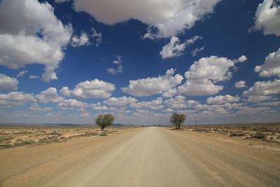 C19 highway