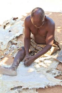Damara man tanning animal skin