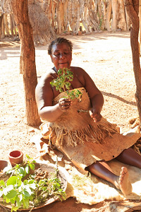 Damara pharmacist explaining the medicinal benefits of different plants found in the area
