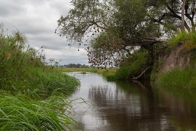 Nkasa Lupala National Park