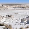 Salt pans in Etosha