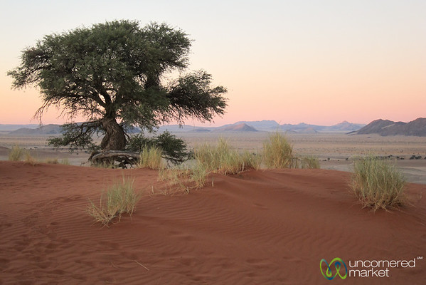 Namib Desert at Sunset - Namibia