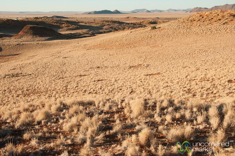 Namib Desert at Dusk - Namibia