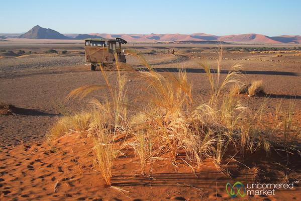 Namib Desert, Morning Drive - Namibia
