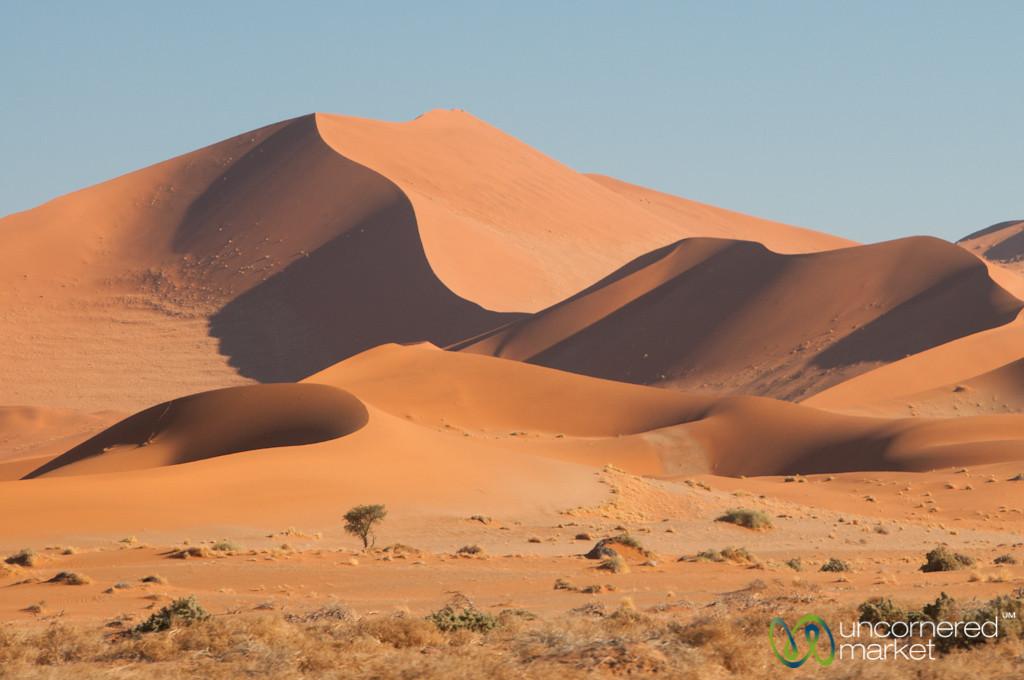 Sand Dunes in the Namib Desert - Namibia