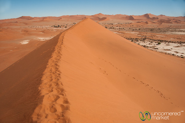 Namib Desert Views from atop Big Daddy Dune - Namibia