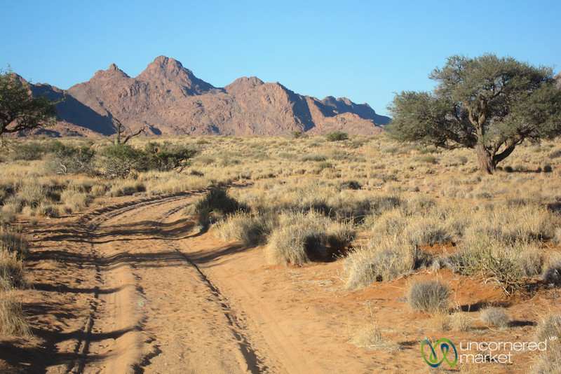 Late Afternoon Walk - South Namibia