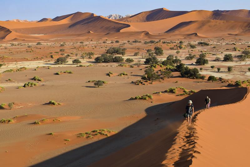 Dunes Namib-Naukluft