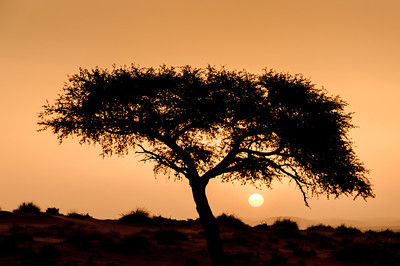 Sunset at Namib Desert, Namibia