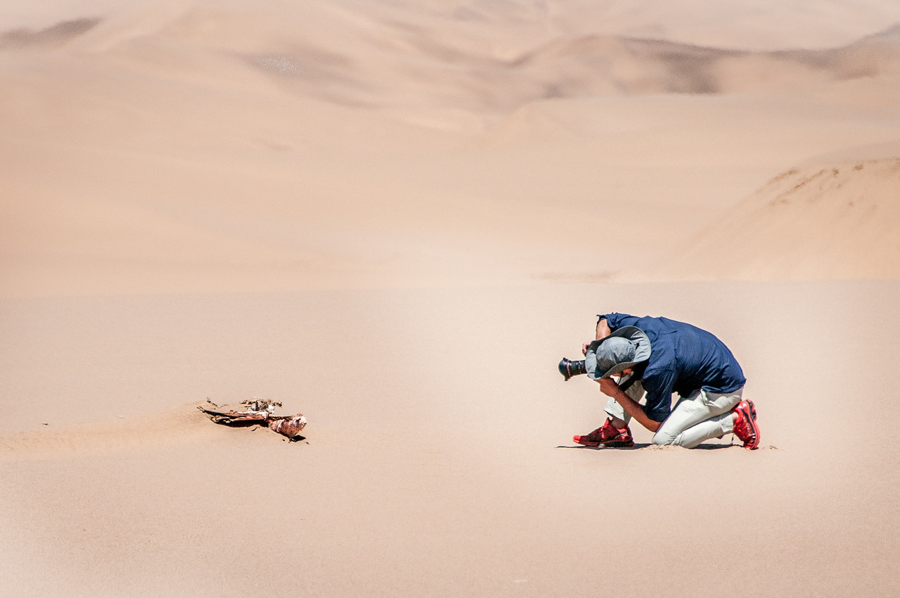Photographer capturing a tortoise in Namib Desert