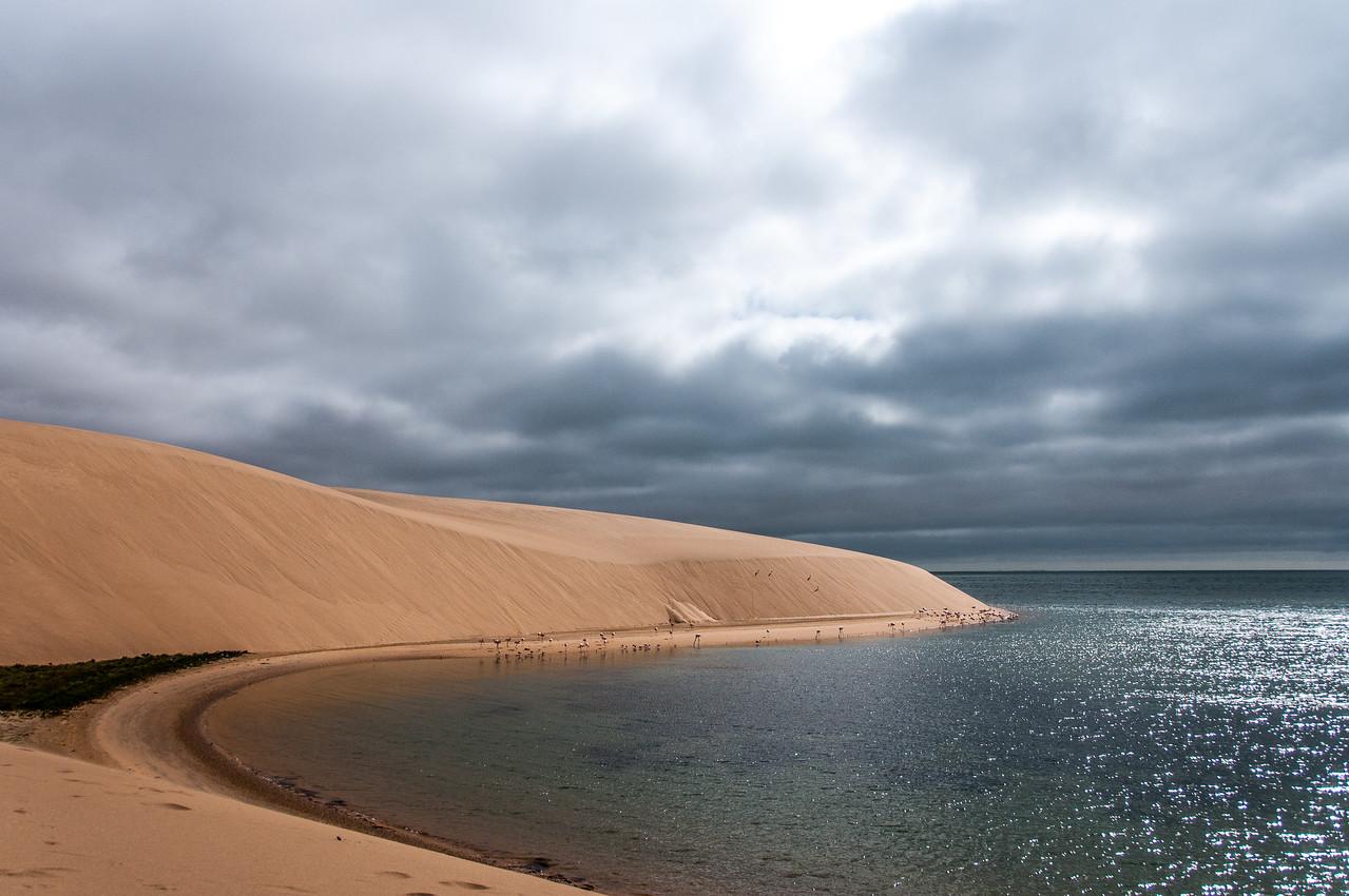 Desert and ocean meets at Namib Desert, Namibia