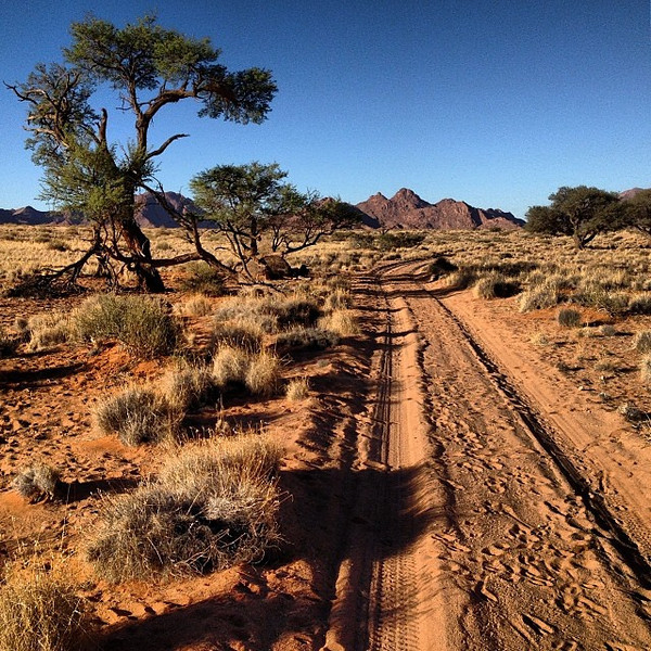 Sundowner drive in Sesreim, Sossusvlei. Poking around for the locals: oryx, springbok, and ostrich. Namibia open roads.