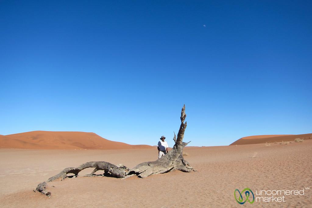 Man and Tree - Namib-Naukluft Park, Namibia