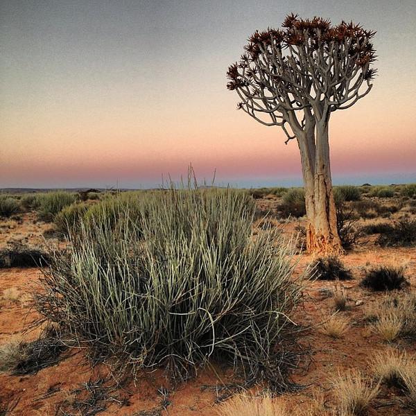 Namibian desert sundowner. Mother Nature's colors represent. ROYGBIV