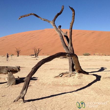 Deadvlei (Dead Marsh) - Namib Desert, Namibia