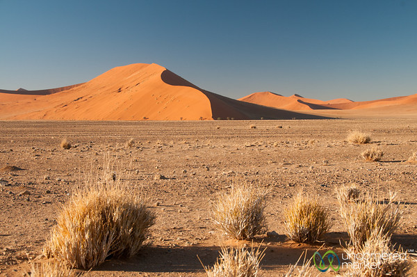 Dunes of the Namib Desert - South Namibia