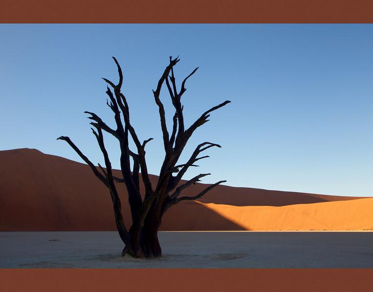 Dead Vlei-001, Sossusvlei, Namib Desert
