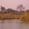 Za 3987 Okavango Rivier