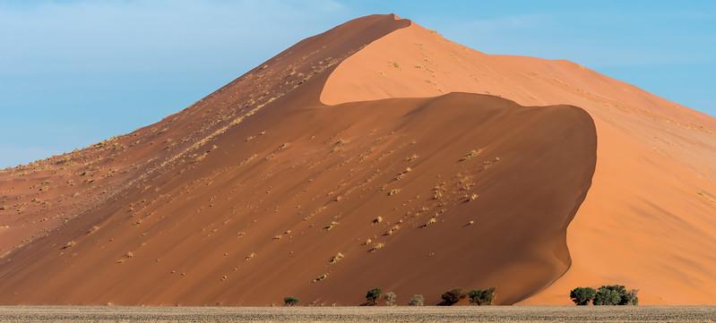 Wonders Of The Namib-Naukluft National Park