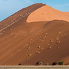 Wonders Of The Namib-Naukluft National Park
