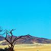 A scene of the Namib Desert