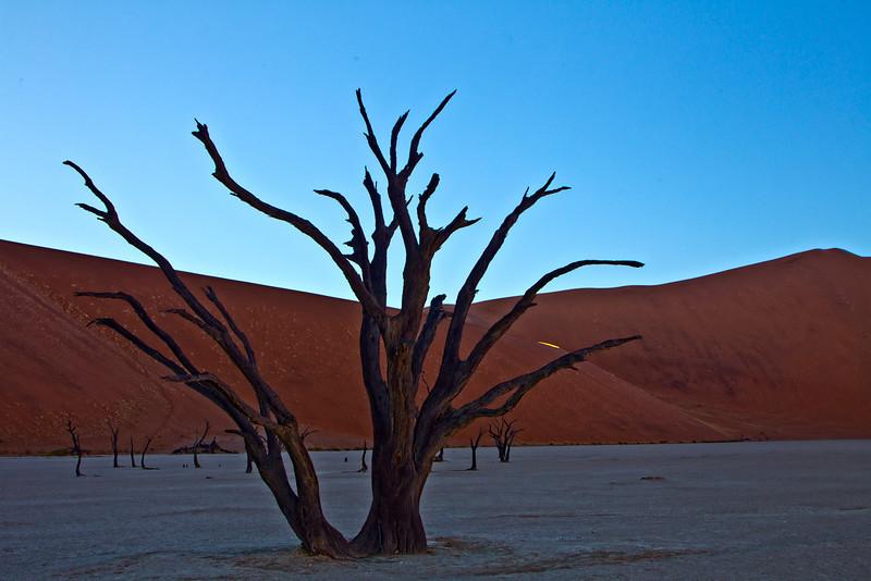 Dead Vlei, Sossusvlei, Namibia - 2010