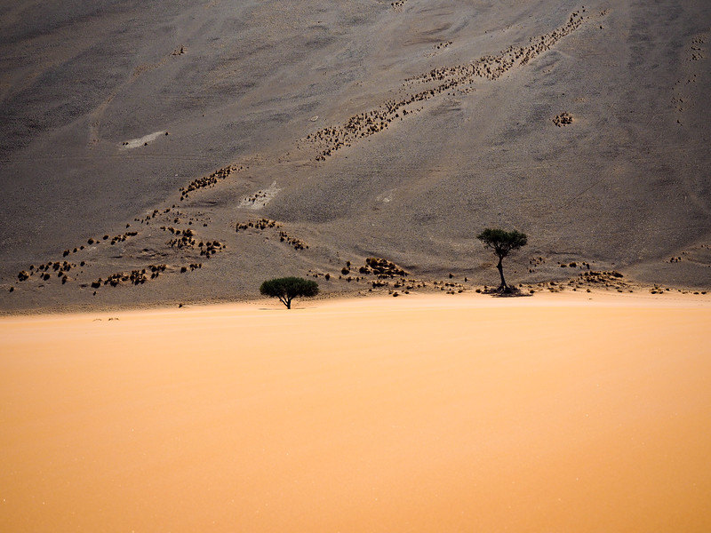 Atop Dune 45 in Namibia