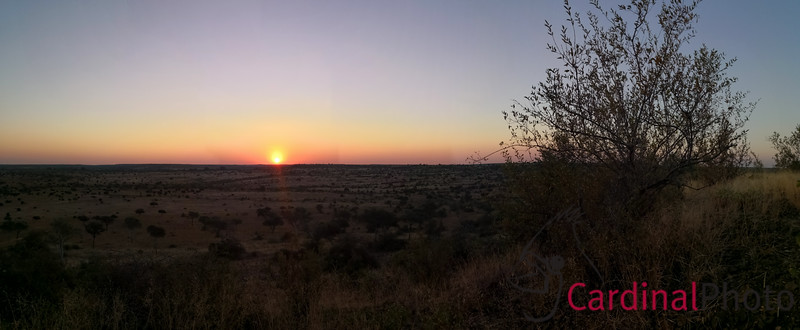 Automatically-generated panorama of sunset. The Pano feature is awesome!