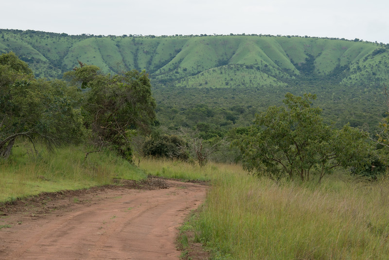 Main Road in Akagera Park