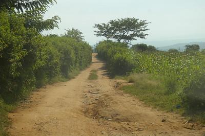 Akagera May 2012