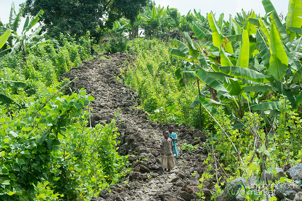 Kids in the Field - Rwanda