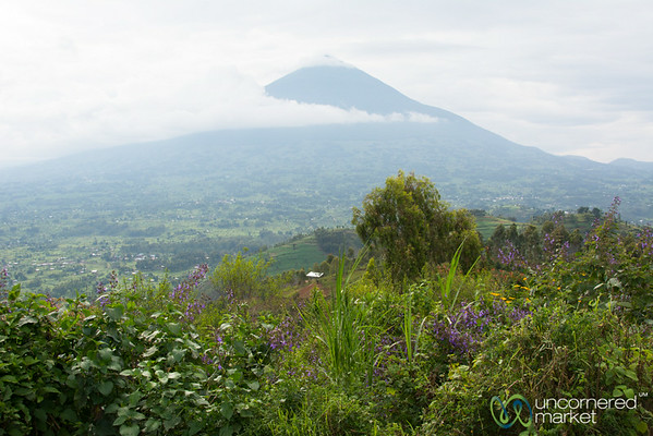 Mt. Muhabura Through the Clouds - Rwanda