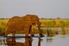 Babatwa National Park, Namibia