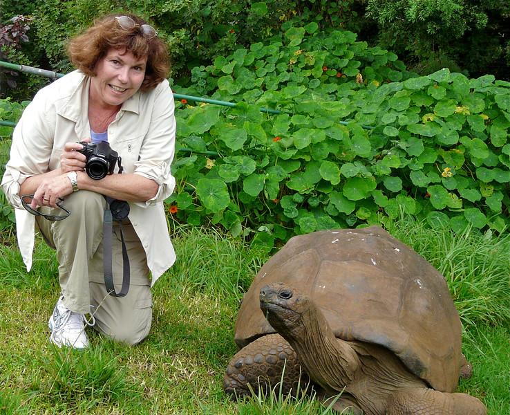 Donna meets a tortoise