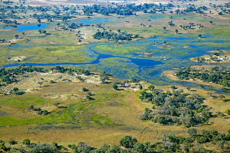 Okavango Delta flying to Botswana from South Africa