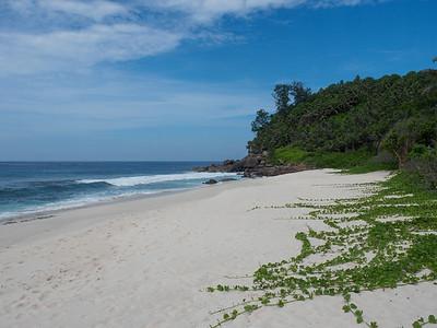 Anse Bazarca Beach
