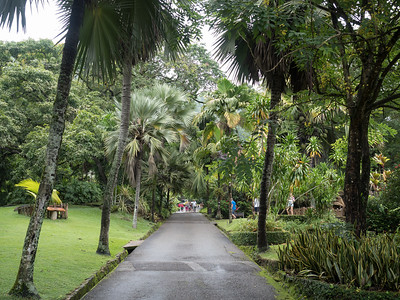 Seychelles National Botanical Gardens