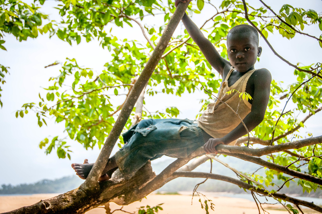 Child climbing a tree in Freetown, Sierra Leone