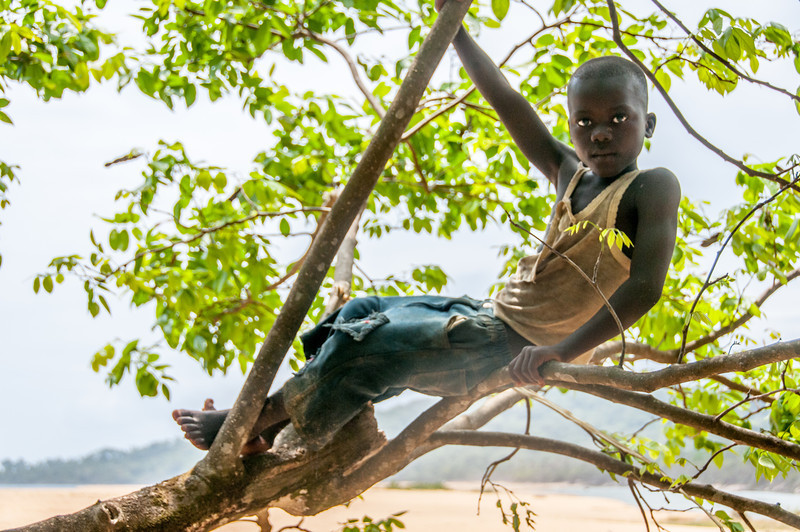 Kid climbing up tree in Freetown, Sierra Leone