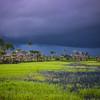 The dark skies of the rainy season