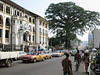 FREETOWN, SIERRA LEONE - AUGUST,2006: The 500 year old cotton tree at the heart of the city on  Saika Stevens Street in downtown freetown. (Photo by: Christopher Herwig)