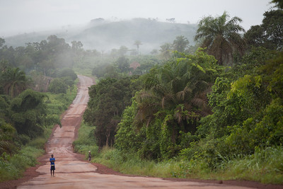 Road through the Rainforest