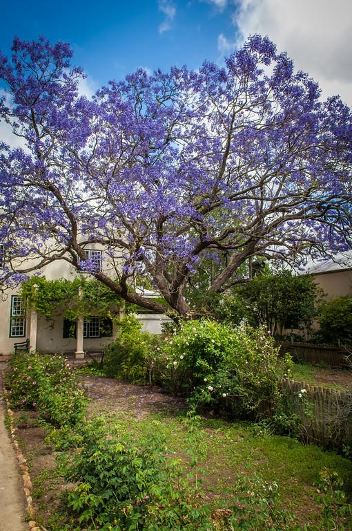 Dorp Museum at Stellenbosch